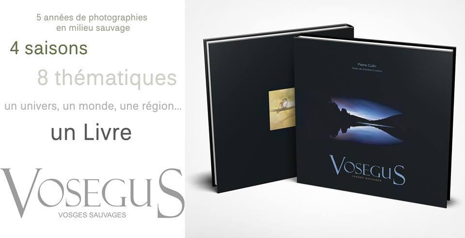 Un Magnifique Livre Photo Sur Les Vosges Vosegus De Pierre