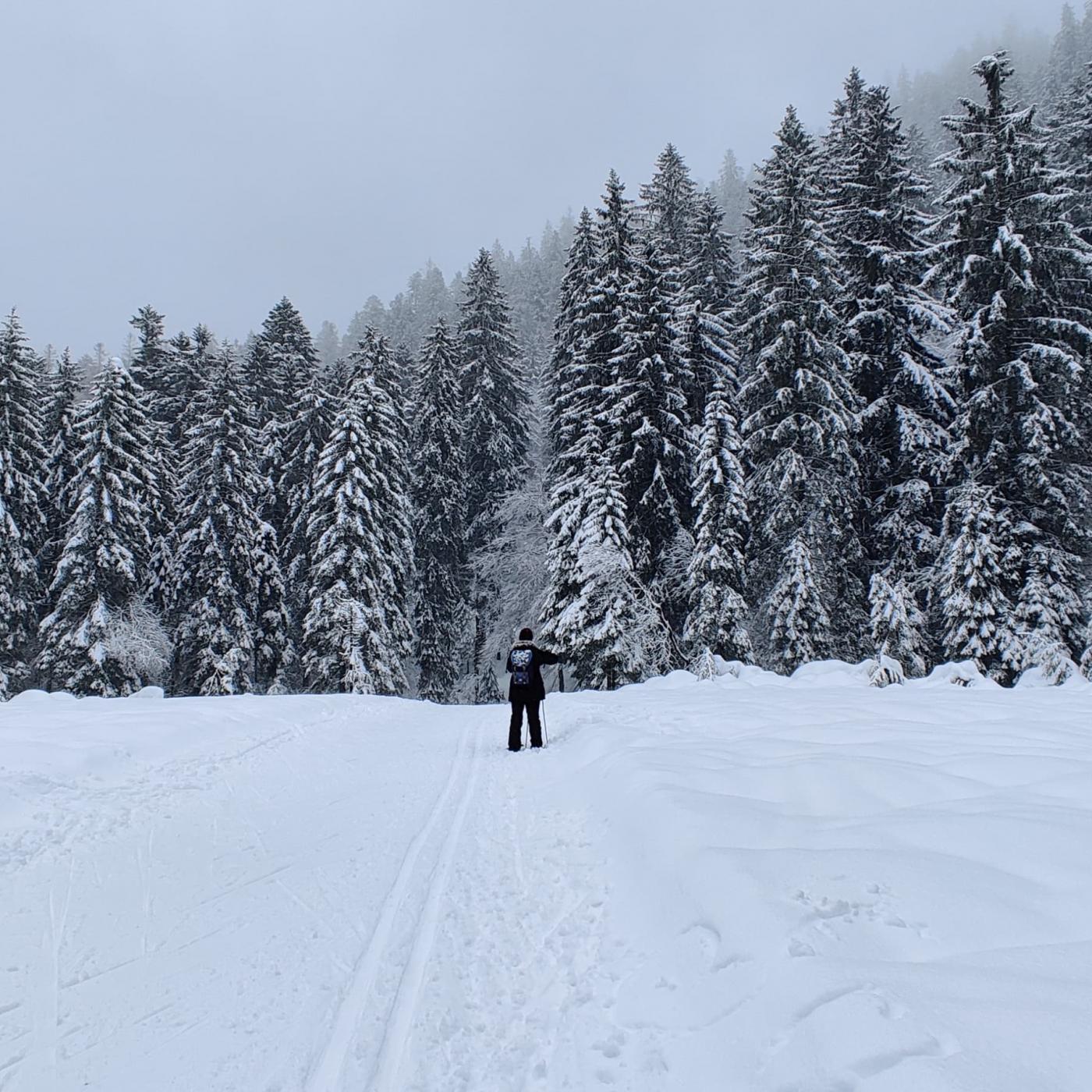 Vosges : Disparition de Thibaut Leduc, gérant de la station de ski de Ventron